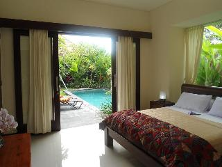 Elegant villa sleep 7 pvte pool walk beach / shops - Sanur vacation rentals