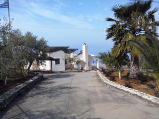 Gorgeous Villa with A/C and Kettle in Kalamata - Kalamata vacation rentals