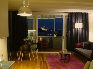 stylish loft + private terrace & views in Galata - Istanbul vacation rentals