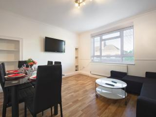 Evans House - Central London 2 bedroom apartment - London vacation rentals