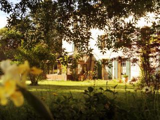 Domaine de La Salutière - La Grande Maison 5CH - Lauraguel vacation rentals