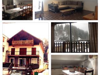 Nice Condo with Internet Access and Balcony - Saint-Jean-Saint-Nicolas vacation rentals