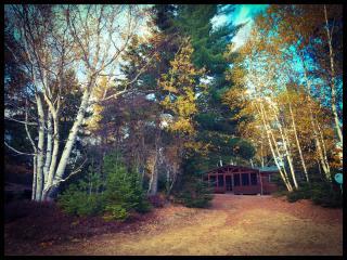 Adirondack Lake front Cabin with beach - Indian Lake vacation rentals