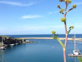 Monolocale, ideale per vacanze estive - Ventotene vacation rentals