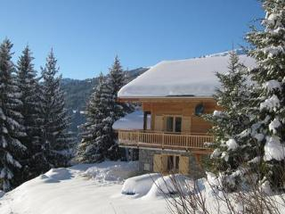 Chalet Celine - Les Gets vacation rentals