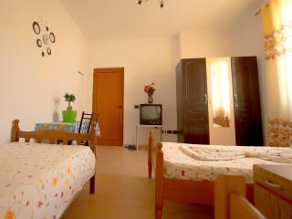 Lovely Guest house with Internet Access and A/C - Durres vacation rentals