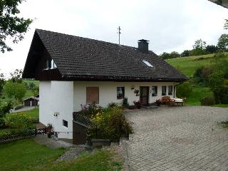 Vacation Apartment in Dachsberg - 753 sqft, 1 bedroom, max. 3 people (# 7809) - Dachsberg vacation rentals