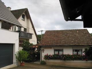 Vacation Apartment in Muellheim - 646 sqft, 2 bedrooms, up to 4 people (# 7823) - Feldberg vacation rentals