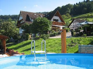 Vacation Apartment in Buehlertal -  (# 7829) - Buhlertal vacation rentals