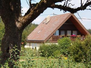 Vacation Apartment in Niedereschach - 1163 sqft, max. 6 persons (# 7834) - Niedereschach vacation rentals