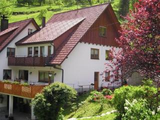 Vacation Apartment in Bad Peterstal-Griesbach -  (# 7941) - Bad Peterstal-Griesbach vacation rentals