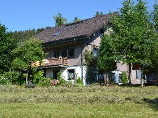 Vacation Apartment in Todtnauberg - 484 sqft, 1 to 2 persons (# 8030) - Todtnauberg vacation rentals