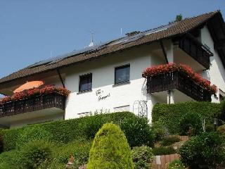 Vacation Apartment in Zell am Harmersbach - 1 Bedroom (# 8061) - Zell am Harmersbach vacation rentals