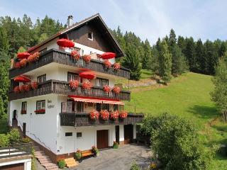 Vacation Apartment in Enzkloesterle -  (# 8316) - Enzklösterle vacation rentals