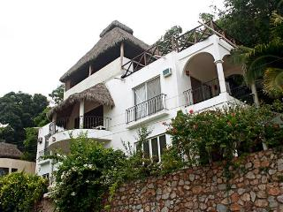 Beautiful House with Internet Access and A/C - La Manzanilla vacation rentals