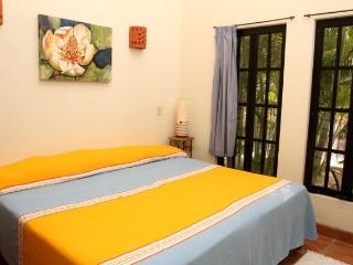 Charming Condo with Internet Access and A/C - La Manzanilla vacation rentals
