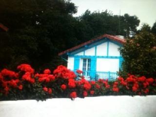 Bright 3 bedroom Tarnos House with Internet Access - Tarnos vacation rentals