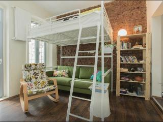 Studio Flat with Private Backyard in Galata - Istanbul vacation rentals