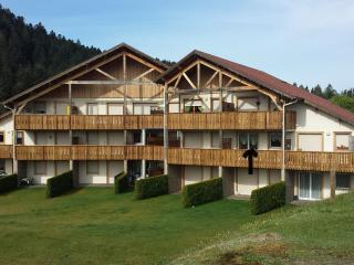 1 bedroom Apartment with Tennis Court in Gerardmer - Gerardmer vacation rentals