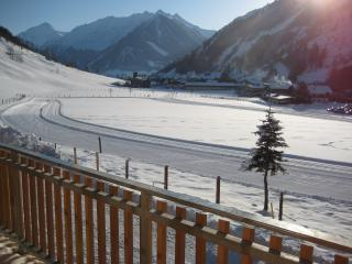 Vacation rentals in Austrian Alps