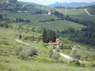 Countryhouse on hills in Florence Tuscany - Florence vacation rentals