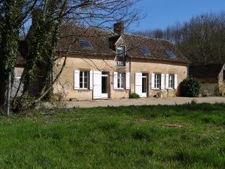 LA PETITE SAUVAGERE / 20 minutes from 24 hours racing circuit - Le Mans vacation rentals