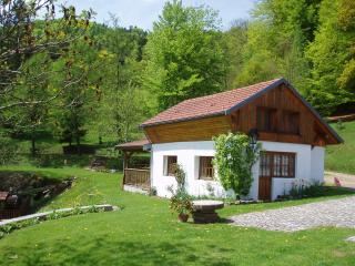 Bright Ski chalet in Le Thillot with Internet Access, sleeps 4 - Le Thillot vacation rentals