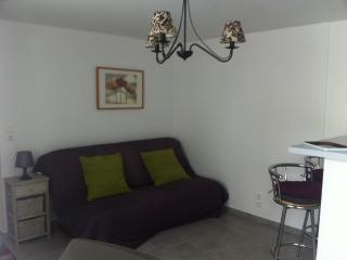 Nice Studio with Central Heating and Television - Saint Geniez D'olt vacation rentals