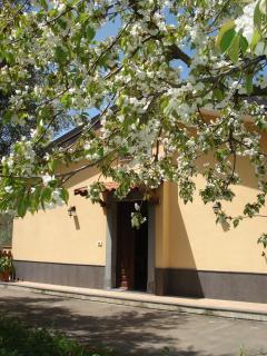 Nice Villa with Dishwasher and Washing Machine - Motta Camastra vacation rentals