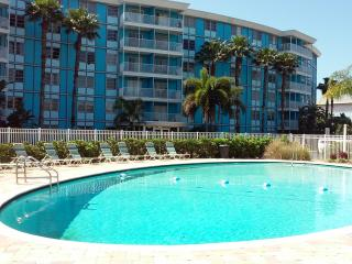 Elegant 1/1 Private Condo--4 miles to beaches! - Saint Petersburg vacation rentals