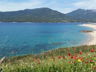 Studio T1 bis Propriano vue mer (Corse du sud) - Propriano vacation rentals