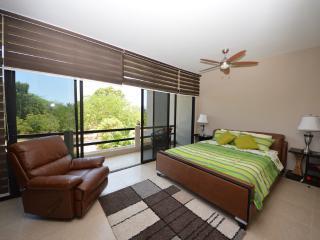 Deluxe Beach Home in San Clemente104 - San Jacinto y San Clemente vacation rentals