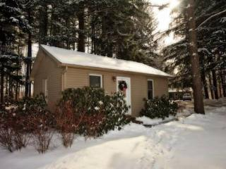 1 BR Private Cottage at Woodfield Manor, Poconos - Swiftwater vacation rentals