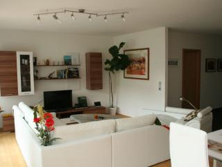 Vacation Apartment in Konstanz - bright, luxurious (# 5601) - Konstanz vacation rentals