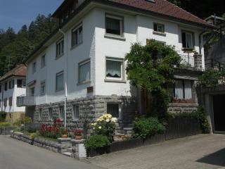 Vacation Apartment in Triberg im Schwarzwald - 2 bedrooms, max. 4 People (# 7594) - Triberg vacation rentals