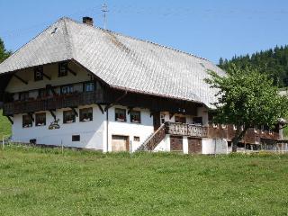 Vacation Apartment in Ibach - 646 sqft, 2 Bedroom (# 7605) - Ibach vacation rentals