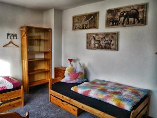 Vacation Apartment in Wolfenbüttel - quiet location, central, close to nature (# 7798) - Wolfenbüttel vacation rentals