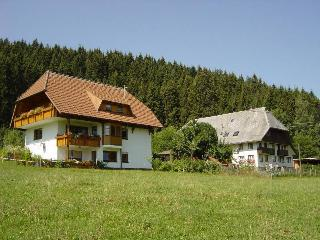 Vacation Apartment in Schramberg -  (# 8384) - Schramberg vacation rentals