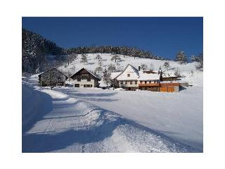 Vacation Apartment in Oberharmersbach - 538 sqft, 1 bedroom, max. 3 people (# 8394) - Oberharmersbach vacation rentals