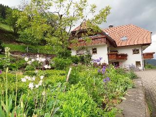Vacation Apartment in Hofstetten (Baden) - 484 sqft, 1 bedroom, max. 2 persons (# 8396) - Schramberg vacation rentals