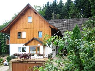 Vacation Apartment in Ottenhoefen im Schwarzwald - 2 bedrooms, max. 6 persons (# 8405) - Sulzbach vacation rentals