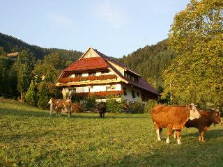 Vacation Apartment in Zell am Harmersbach -  (# 8408) - Zell am Harmersbach vacation rentals