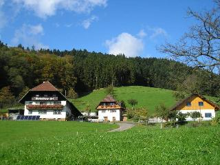 Vacation Apartment in Hausach - 646 sqft, max. 4 people (# 8419) - Hausach vacation rentals