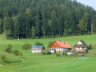 Vacation Apartment in Wolfach - 484 sqft, 1 bedroom, max. 2 persons (# 8427) - Wolfach vacation rentals