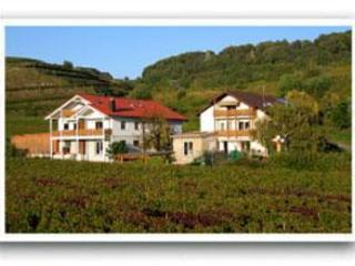 Vacation Apartment in Vogtsburg - 861 sqft, 2 bedrooms, max. 4 people (# 8438) - Jechtingen vacation rentals