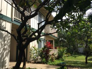 Kai'alani Condo *Short walk to Beaches* Summer and Fall dates Available - Poipu vacation rentals