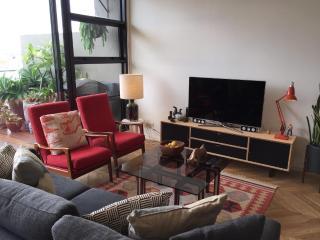 SPLIT LEVEL LUXURIOUS FURNISHED PENTHOUSE - Sydney vacation rentals