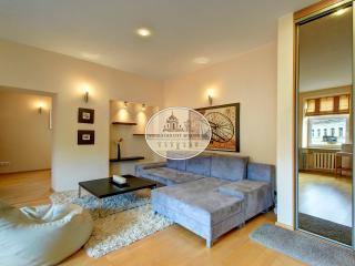 Fantastic apartment in the city center of vilnius - Vilnius vacation rentals