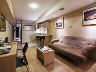 Gallery Residence Basement - Istanbul vacation rentals
