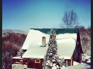 Nice Chalet with Internet Access and Satellite Or Cable TV - Kopaonik vacation rentals